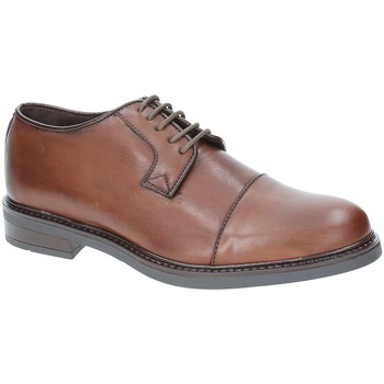 kengät Miehet Derby-kengät Rogers 2040 Ruskea