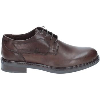 kengät Miehet Derby-kengät Rogers 2027 Ruskea