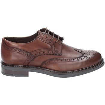 kengät Miehet Derby-kengät Rogers 3040 Ruskea