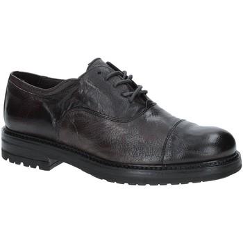 kengät Miehet Derby-kengät Exton 692 Ruskea