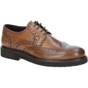 kengät Miehet Derby-kengät Exton 5446 Ruskea