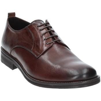 kengät Miehet Derby-kengät Exton 9553 Ruskea