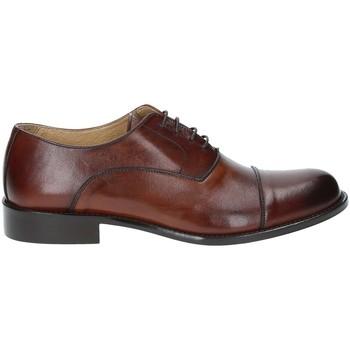 kengät Miehet Herrainkengät Exton 6014 Ruskea