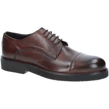 kengät Miehet Derby-kengät Exton 5413 Ruskea
