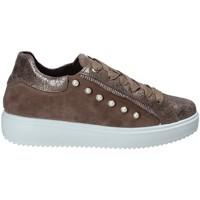 kengät Naiset Matalavartiset tennarit IgI&CO 2153922 Ruskea