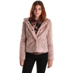 vaatteet Naiset Pusakka Gaudi 821FD39003 Vaaleanpunainen