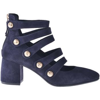 kengät Naiset Korkokengät Elvio Zanon I0703P Sininen