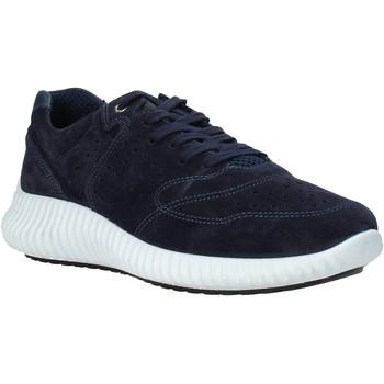 kengät Miehet Matalavartiset tennarit IgI&CO 5123733 Sininen