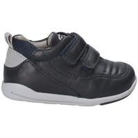 kengät Lapset Matalavartiset tennarit Chicco 01058510 Sininen