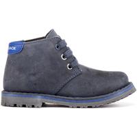 kengät Lapset Bootsit Lumberjack SB47303 003 B03 Sininen