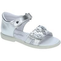 kengät Tytöt Sandaalit ja avokkaat Falcotto 1500702-02-9111 Hopea