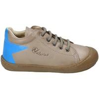 kengät Lapset Matalavartiset tennarit Naturino 2012120-01-9103 Ruskea