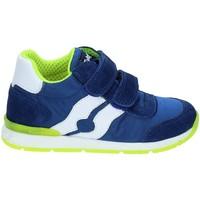 kengät Lapset Matalavartiset tennarit Falcotto 2012380-01-9105 Sininen