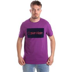vaatteet Miehet Lyhythihainen t-paita Calvin Klein Jeans K10K103012 Violetti