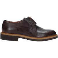 kengät Miehet Derby-kengät Rogers AM001 Ruskea