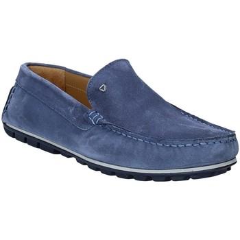 kengät Miehet Mokkasiinit Rogers 701 Sininen