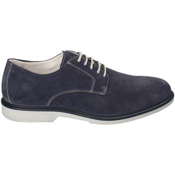 kengät Miehet Derby-kengät IgI&CO 3105711 Sininen