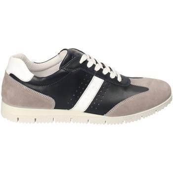 kengät Miehet Matalavartiset tennarit IgI&CO 3121800 Sininen