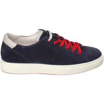 kengät Miehet Matalavartiset tennarit IgI&CO 3132711 Sininen