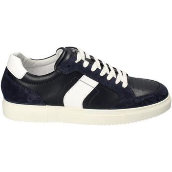 kengät Miehet Matalavartiset tennarit IgI&CO 3132900 Sininen