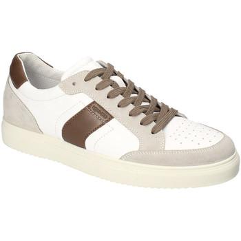 kengät Miehet Matalavartiset tennarit IgI&CO 3132922 Valkoinen