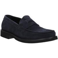 kengät Miehet Mokkasiinit Rogers AZ004 Sininen
