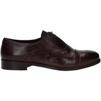 kengät Miehet Derby-kengät Rogers T0001 Ruskea