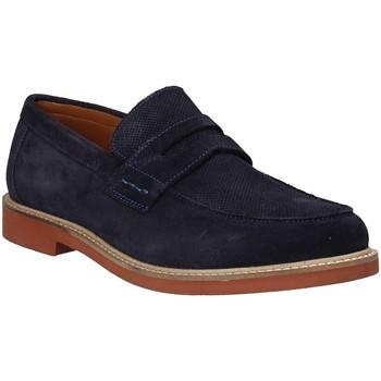 kengät Miehet Mokkasiinit Impronte IM91052A Sininen