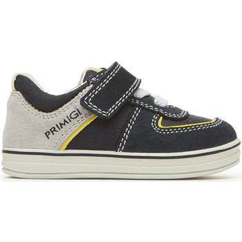 kengät Lapset Matalavartiset tennarit Primigi 3374011 Sininen