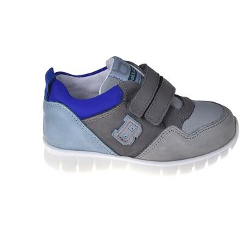 kengät Lapset Matalavartiset tennarit Balducci CSPO3305 Harmaa