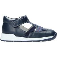 kengät Lapset Sandaalit ja avokkaat Falcotto 2013708-01-1C27 Sininen