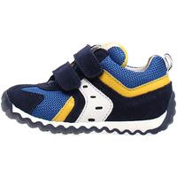 kengät Lapset Matalavartiset tennarit Naturino 2013741-01-1C81 Sininen