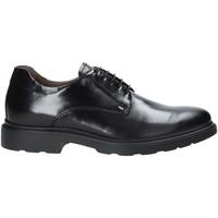 kengät Miehet Derby-kengät NeroGiardini A901141U Musta