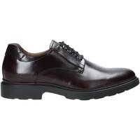 kengät Miehet Derby-kengät NeroGiardini A901141U Punainen