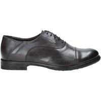 kengät Miehet Derby-kengät Exton 3102 Harmaa