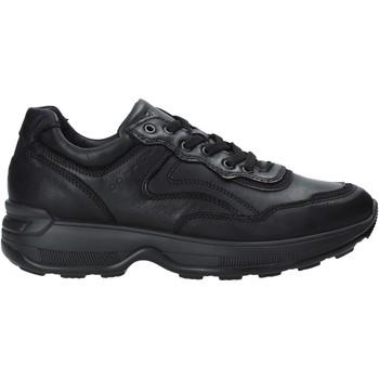 kengät Miehet Matalavartiset tennarit IgI&CO 4114300 Musta
