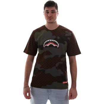 vaatteet Miehet Lyhythihainen t-paita Sprayground SP018SBRO Ruskea