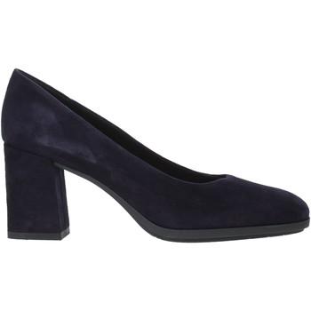 kengät Naiset Korkokengät Grunland SC4757 Sininen