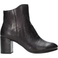 kengät Naiset Nilkkurit IgI&CO 4189700 Musta