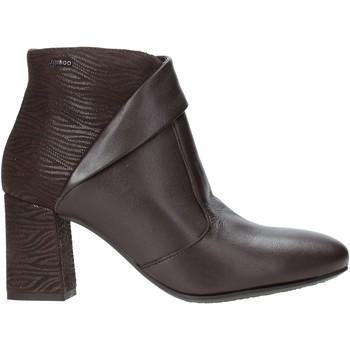 kengät Naiset Nilkkurit IgI&CO 4191111 Ruskea