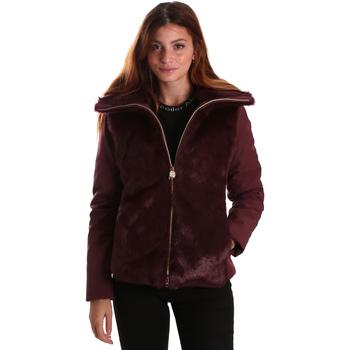 vaatteet Naiset Takit Invicta 4431580/D Punainen