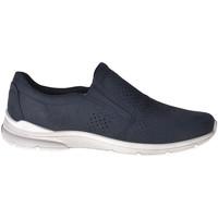 kengät Miehet Tennarit Ecco 51164402058 Sininen
