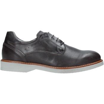 kengät Miehet Derby-kengät NeroGiardini E001462U Harmaa