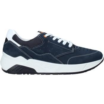 kengät Miehet Matalavartiset tennarit IgI&CO 5132033 Sininen