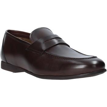 kengät Miehet Mokkasiinit Rogers CAR01 Ruskea