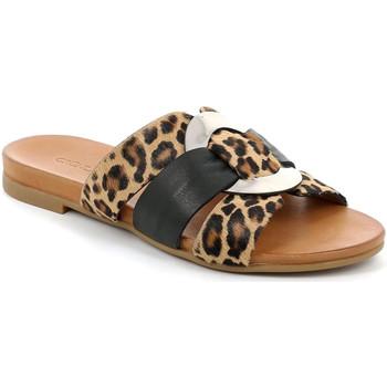 kengät Naiset Sandaalit Grunland CI2855 Musta