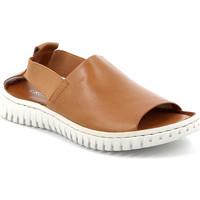 kengät Naiset Sandaalit ja avokkaat Grunland SA2538 Ruskea