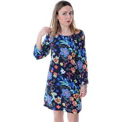 vaatteet Naiset Lyhyt mekko Pepe jeans PL952676 Sininen
