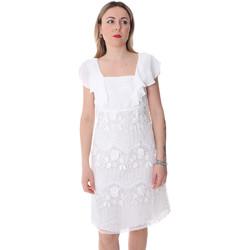 vaatteet Naiset Lyhyt mekko Fracomina FR20SP584 Valkoinen