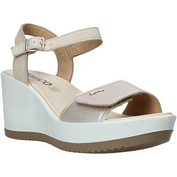 kengät Naiset Sandaalit ja avokkaat IgI&CO 5179400 Beige